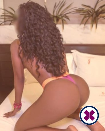 Yolanda is a high class Brazilian Escort Virtual
