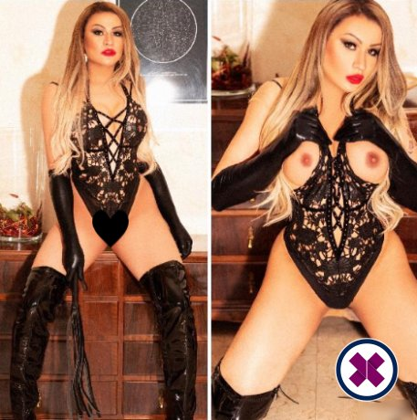Victoria Kendall TS is a top quality Brazilian Escort in Manchester