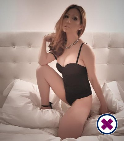 Delicious Massage TS is one of the best massage providers in Amsterdam. Book a meeting today