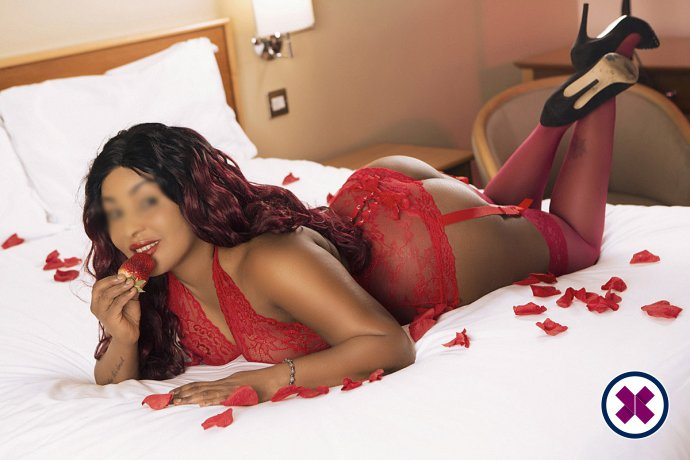 Bella is a top quality French Escort in Birmingham