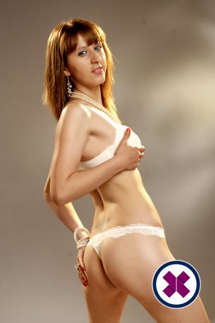 Sofia is a hot and horny Dutch Escort from Amsterdam