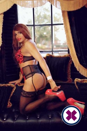 Keila TS is a sexy Puerto Rican Escort in Westminster